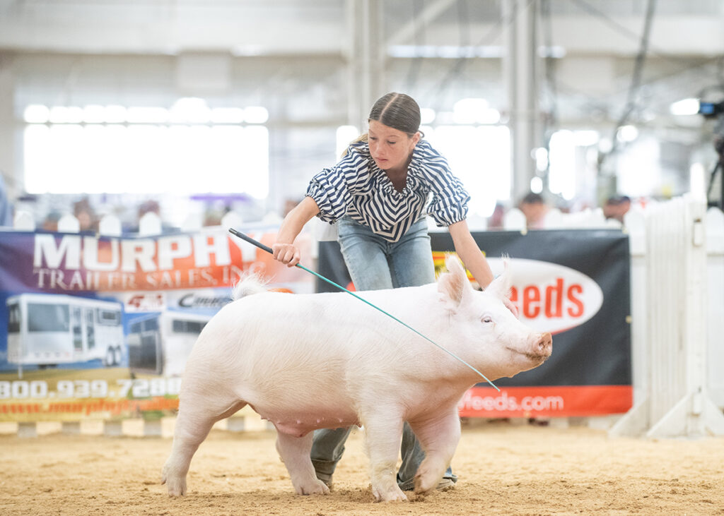 2nd Place Class 6 Yorkshire Barrow