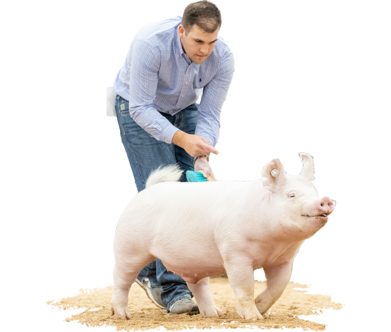 Champion-Division-1-&-4th-Overall-Yorkshire-Barrow-The-Exposition-Nash-Stoller-Jasper-X-Dominator
